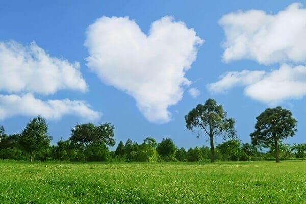 環境に優しいイメージの空