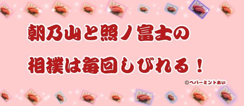 朝乃山と照ノ富士の相撲は毎回しびれる!アイキャッチ